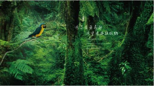 xishuangbanna 2.jpg